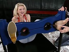 cougar radka tickled in the stock